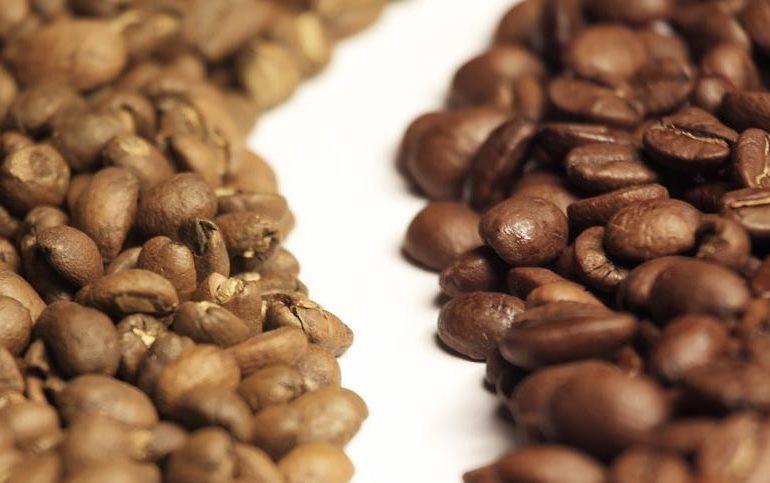 Arabica – Robusta: Caratteristiche, differenze e curiosità sulle 2 miscele di caffè