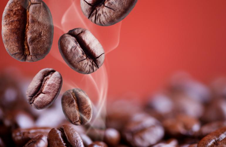 Il profumo del caffè: un viaggio nella mente capace di annientare cattivi pensieri, odori sgradevoli e insetti infestanti